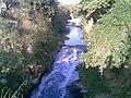Córrego Guaraú à jusante da ETE Canjica em Itu - panoramio - zardeto.jpg