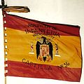 C-16. Bandera Agrup. Infant. Indep.jpg