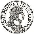 Calpurnia Pisonis.jpg