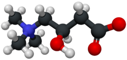 Carnitine-3D-structure.png