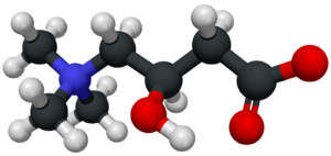 Carnitine - Image: Carnitine 3D structure