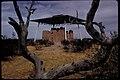 Casa Grande Ruins National Monument (e149c556-da5d-4a10-8f80-9a4182c0252e).jpg