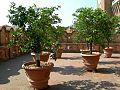 Castello Estense - La terrazza.jpg