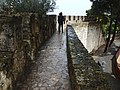 Castelo de Sao Jorge (41454472915).jpg