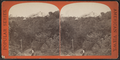 Catskill Mountain House, by E. & H.T. Anthony (Firm).png