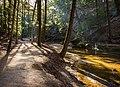 Cedar Falls Trail (32585018381).jpg