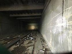 Cedar Street Subway