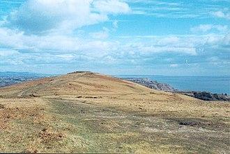 Cefn Bryn - Summit of Cefn Bryn