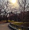 Central Park (64834921).jpeg