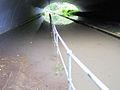 Cheltenham tunnel-1w.jpg