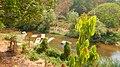 Chiang Mai, 2016 april - panoramio - Roma Neus (207).jpg