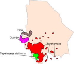 Los Prinles Grupos   Tnicos Del Estado De Chihuahua Son