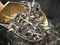 China Fancy White Peony Tea.jpg