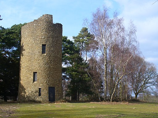 Chinthurst Hill Folly - geograph.org.uk - 1765823