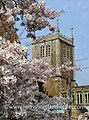Church and Cherry- Badby, Northants (33287471953).jpg