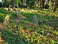 Cmentarz mahometański Studzianka 05 JoannaPyka.JPG