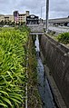 Colma Creek at Woodlawn.jpg