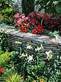 Como Park Zoo and Conservatory - 52.jpg