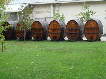 Image of old rauli wood barrels outside Concha...