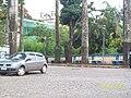 Congonhas do Campo MG Brasil - O pereba com a igreja de Bom senhor de Matosinhos ao fundo - panoramio.jpg
