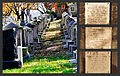 Congressional Cemetery Tych.jpg