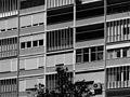Conjunto Misto na Av. Infante Santo, PESSOA, GANDRA, MANTA (1953-1962) (30910019636).jpg