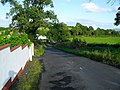 Connellystown Road, Dromore (3) - geograph.org.uk - 1457309.jpg
