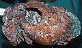 Copper skull (Mesoproterozoic, 1.05-1.06 Ga; Calumet and Hecla Mine, Calumet, Michigan, USA) 5 (16680420874).jpg