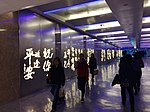 Corridor Light Decorations.JPG