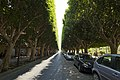 Corso Vittorio Emanuele, Noto SR, Sicily, Italy - panoramio.jpg