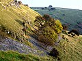 Cressbrook Dale, near Litton - geograph.org.uk - 1590180.jpg