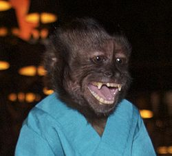 Crystal the Monkey at SDCC 2012 (cropped).jpg