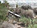 Désert Biosphère 2.jpg
