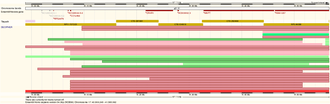 DECIPHER - A segment of the human reference genome, viewed using Ensembl with the DECIPHER track enabled. Red bars represent individual mutations for anonymous patients with deletions across this region, while green bars represent patients with duplications across this region. The region shown encompasses the segment of chromosome missing in patients with 17q21.3 recurrent microdeletion syndrome.