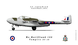 DH100NF10web.jpg