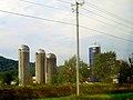 Dairy Farm near Arena - panoramio.jpg