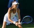 Daniela Hantuchová 5, 2015 Wimbledon Championships - Diliff.jpg