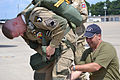 David Accetta (right) assists Del Andrews, formerly of the 101st Military Police Company in 1984-1985, with his gear before a paratrooper jump, during a rehearsal at Campbell Army Airfield on Fort Campbell, Ky 120810-A-ZT847-508.jpg