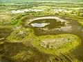 De Okovango Delta vanuit de lucht (6558969299).jpg