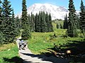Dead Horse Creek Trail (24ba3128bf5a46cab2080bece5dbab62).JPG