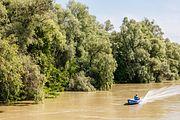 Delta del Danubio, Rumanía, 2016-05-28, DD 12.jpg