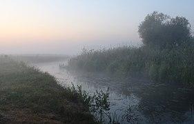 Desna river Vinn meadow 2019 G01.jpg