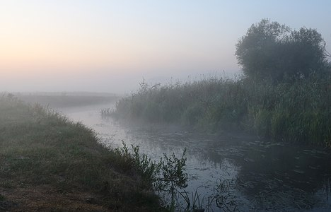Mist (visible atmospheric water) shortly before sunrise