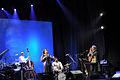 Dianne Reeves @ Jazz Fest Sarajevo 2008 (3005617537).jpg