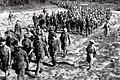 Dien Bien Phu 1954 French prisoners.jpg