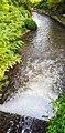 Diluizione acqua Villoresi nell'Olona inquinato. Ph Ivan Stesso.jpg