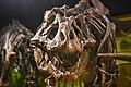 Dinosaur (30194433104).jpg