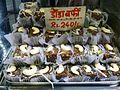 Dodha Burfi – Punjabi Milk Fudge 1 (31742858114).jpg