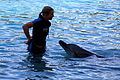 Dolphin Cove 25.jpg