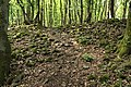 Dornburg Celtic Oppidum Hildegardisfelsen 2.jpg